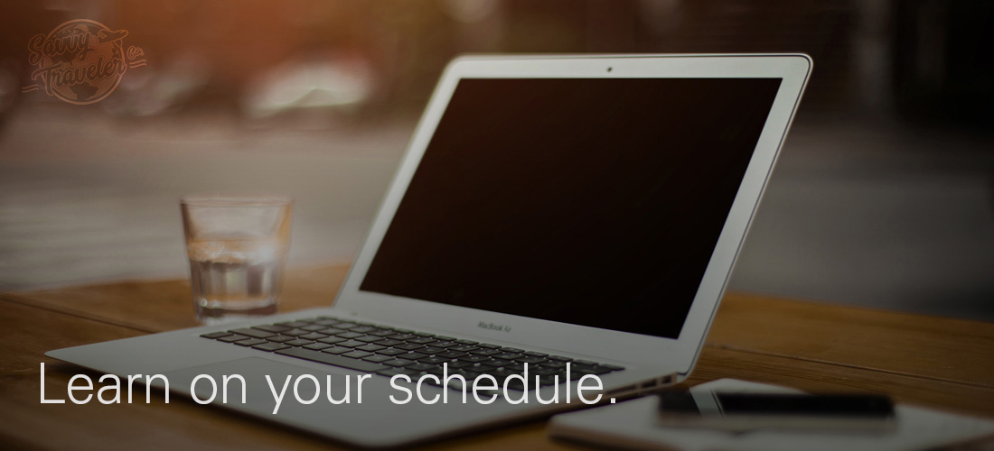 Savvy Traveler Co. Laptop pic 2